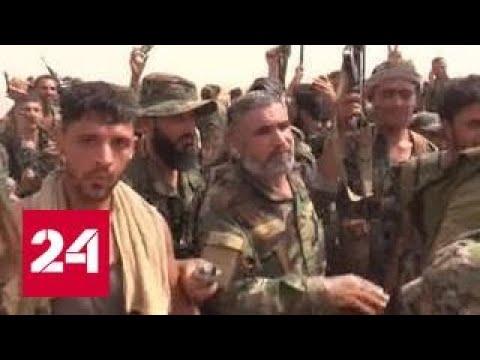 Сирийская армия при