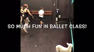 Little Lord Lester Lamb Visits Ballet Class