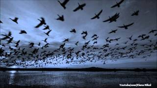 Harri Agnel - Run Out Of Fear (Athens Airport 4 A.M. Mix)