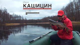 Ловля ЩУКИ на воблеры Малая река осенью LiveSL 12