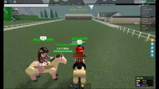 Roblox Horse Valley ALPHA THE WOLVES ARE EATING MY HORSE
