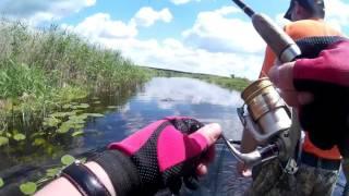 Рыбалка с приключениями 12.06.17. на р.Битюг под Пчелиновкой(без цензуры).