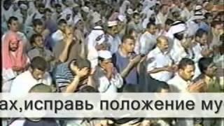 Исламские Учёные делают Дуа Муджах1идам всего Мира