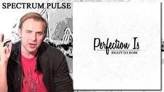 Brazy Da Bo$$ - Perfection Is - Album Review