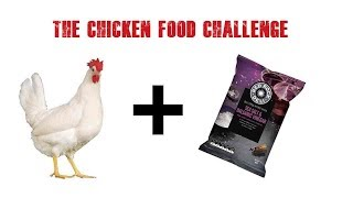 chicken food challenge 10. Salt and Vinegar Chips / Crisps