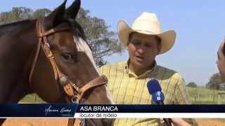 LOCUTOR ASA BRANCA, FABIANO RANCHARIA - PROGRAMA MARIANA GODOY