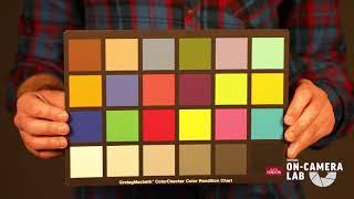 Virtual On-Camera Lab Tech Tips: Color Temperature