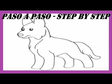 como-dibujar-un-perro-pastor-alemán-l-how-to-draw-a-german-shepherd-dog