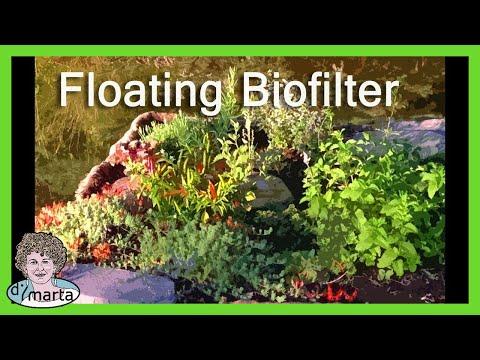 DIY Floating Bio-Filter Garden