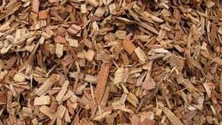 Top 9 Easy Tips On How To  Gardening With WOODCHIPS .