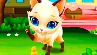Любимый Котенок Мой Пушистик.Играем с Сиамской Кошечкой.Мультик Игра для детей и малышей