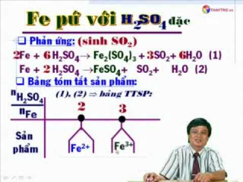 Kim Loại Phản Ứng Với HNO3_ H2SO4 Đặc - thaytro.vn Copy Right 2010_3.flv