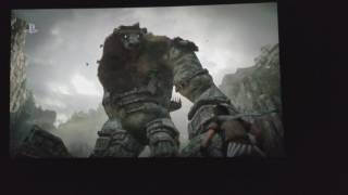 E3 2017 - Shadow of the Colossus Remake Theater Reaction