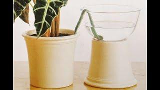 Как ПОЛИВАТЬ комнатные растения во время отпуска | Четыре способа АВТОПОЛИВА цветов своими руками