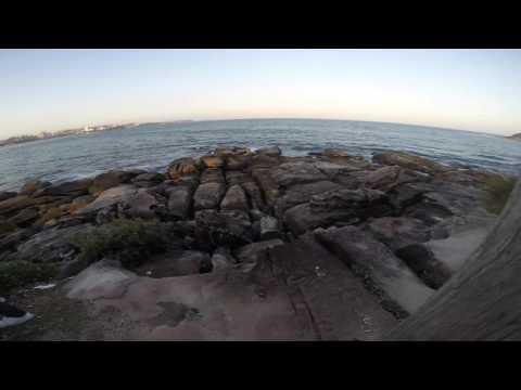 Walking around Sydney by Omar Alvarez [ Sydney - Australia ]