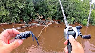 Fishing a CLOSED Lake after MASSIVE Record Breaking Floods!!!