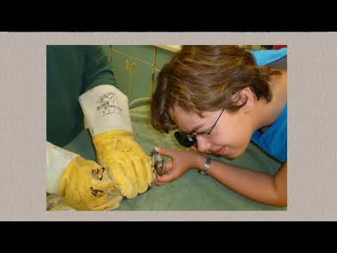 Raptor Academy - Raptor Medical Exam online self-study course