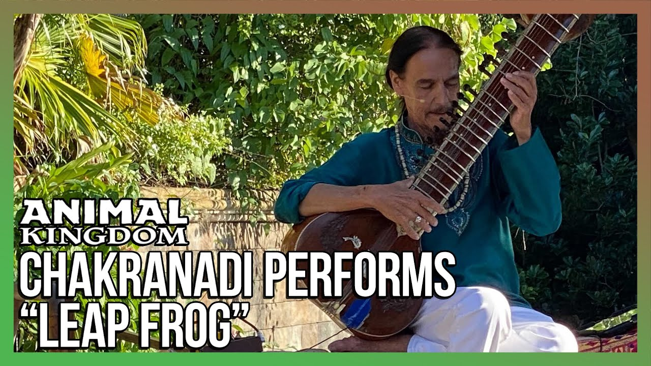 "Chakranadi Performs ""Leap Frog"" Upon His Return To Disney's Animal Kingdom"