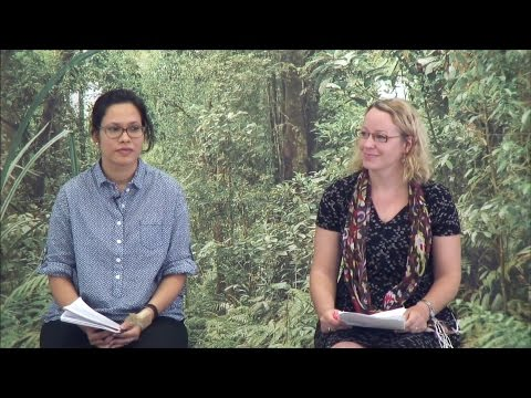 Anastasia Yang & Bimbika Basnett – People in Motion, Forests in Transition