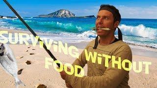 SURVIVOR. Ένα παιχνίδι επιβίωσης στο ψάρεμα.