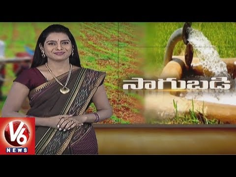 Success Story Of Organic Farmer Ramesh Reddy | Uppal | Sagubadi | V6 News