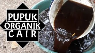 Download lagu POC Kohe Kambing   Pupuk Organik Cair