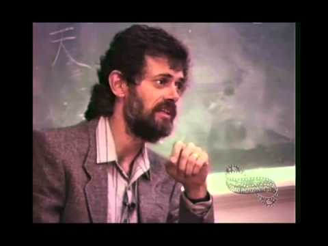 Flashbacks, Bad Trips and Programming on Psychedelics (Terence Mckenna)