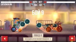 Cats Crash: Непобедимый Титан - 14 побед подряд