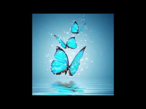 The Voice Of Butterfly - Crocoloko