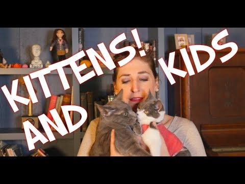 Kittens and Kids  Mayim Bialik
