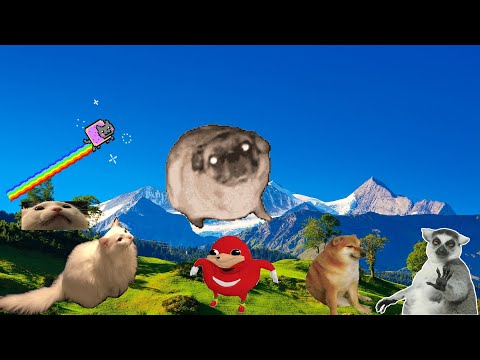 Танцующий Мопс и Его Друзья - Vibing Pug and his Friends