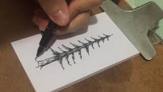 Desenhando Árvores