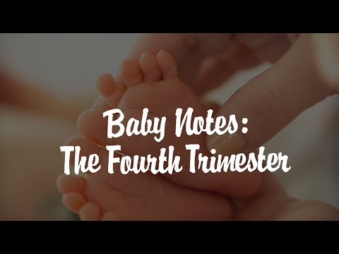 Baby Notes: The Fourth Trimester