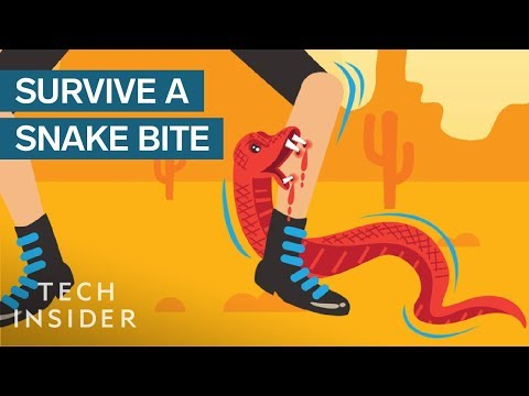 How To Survive A Snake Bite