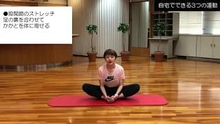 自宅でできる3つの運動|健康運動実践指導者 渋谷美月