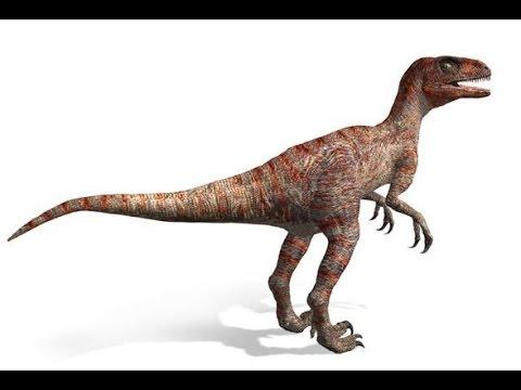 Dromaeosaurus | Enciclopedia sobre Dinosaurios