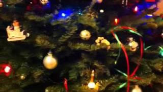 Dawn & Doug's Christmas