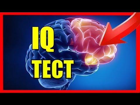 Бесплатный онлайн тест на IQ