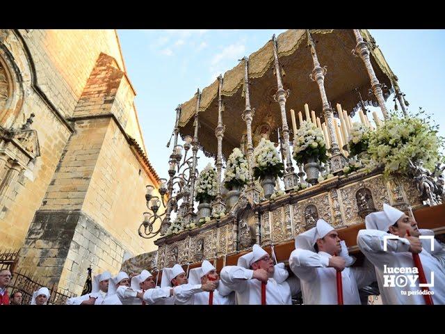 VÍDEO: SEMANA SANTA 2017: Martes Santo: Amor y Paz