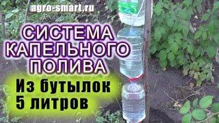 Система капельного полива Своими Руками из 3-х бутылок по 5 литров