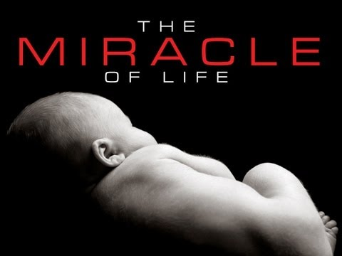 Pro-life | Right to Life Video | The Miracle of Life