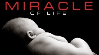 Play Miracle of Life