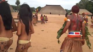 Brazil indigenous dance | Tears Of The Girls In Amazon Rain Forest - 아마존의 눈물 EP.01
