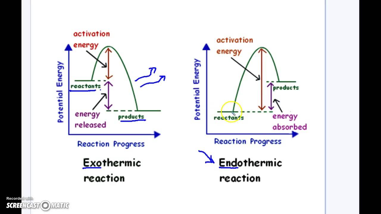 Endothermic vs exothermic reaction graphs youtube ccuart Images