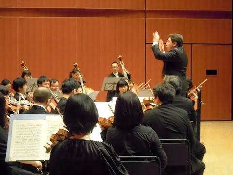 Tchaikovsky 5 symphony