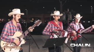 Los Amigueros De La Sierra - Como Coyotes (Inedita) (2015) -