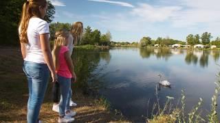 Landal Domein De Schatberg | Video Bungalowpark Sevenum - Limburg