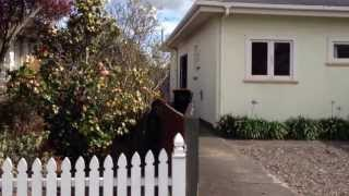 """house For Rent Palmerston North"" 4br/2ba By ""palmerston North Property Management"""