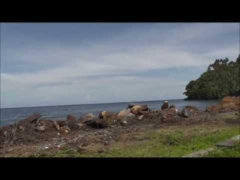 Driving around Pulau Ternate, North Maluku islands, Indonesia