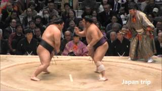 豪栄道 vs 栃煌山の取組。 2016大相撲春場所2日目。